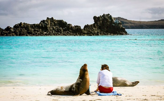 Rest On Beach Of The Galapagos Islands