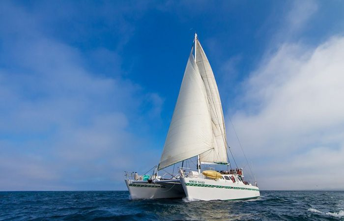SC Nemo 2 Galapagos Islands Cruise
