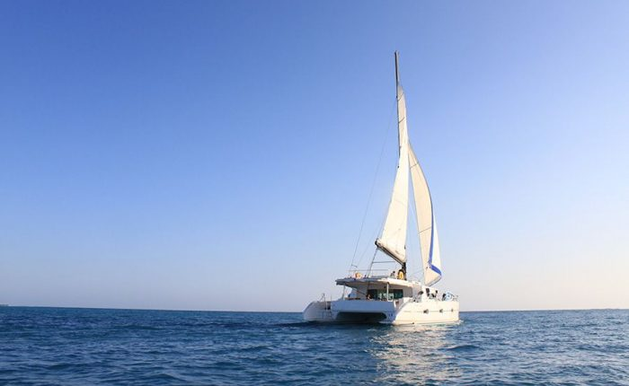Catamaran Dream 60