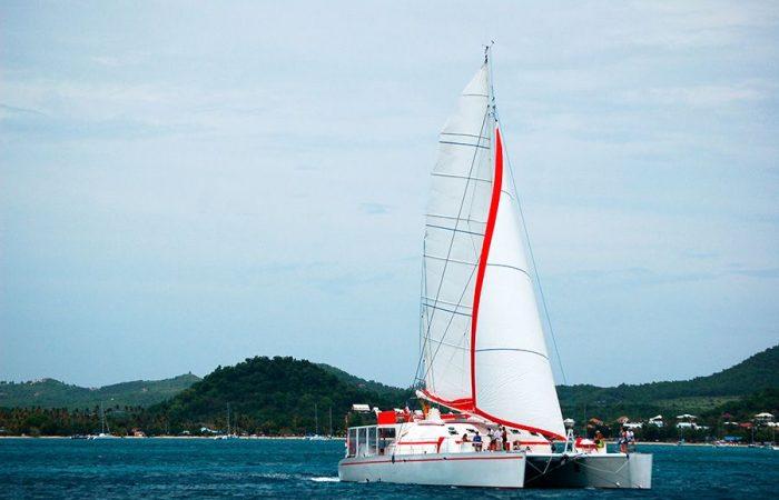 Catamaran Dream 82 Sailing